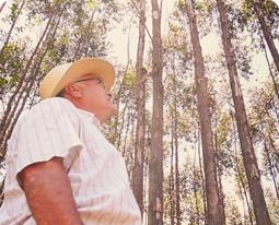 Parceiro Florestal